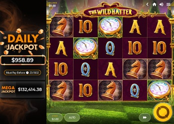 The Wild Hatter - Video Slot Game