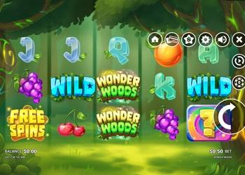 Wonder Woods - Video Slot Game