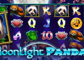 Moonlight Panda - Slot Game - Jet Bingo