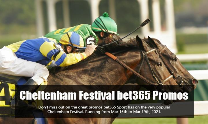 Cheltenham Festival - Sport Promo